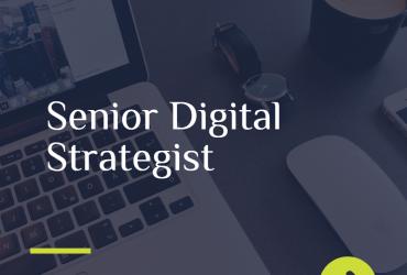 Senior Digital Strategist